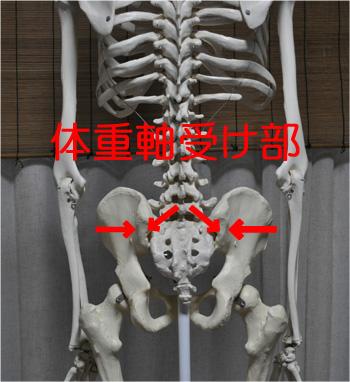 体重軸受け部 ウエイトベアリング