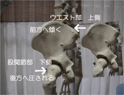 草取りと腰痛,股関節痛の関係
