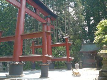 2015520富士吉田市 北口本宮 通称上浅間神社の大鳥居