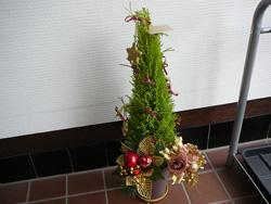 茂原整体カイロオステ楽楽屋のクリスマスツリー