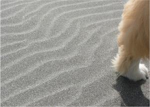 初夏の九十九里浜