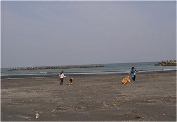 春の九十九里浜