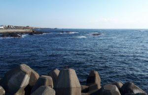千葉県鴨川市の海